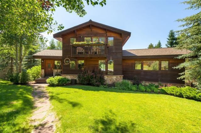 1854 Hunters Court, Steamboat Springs, CO 80487 (#4935987) :: The HomeSmiths Team - Keller Williams