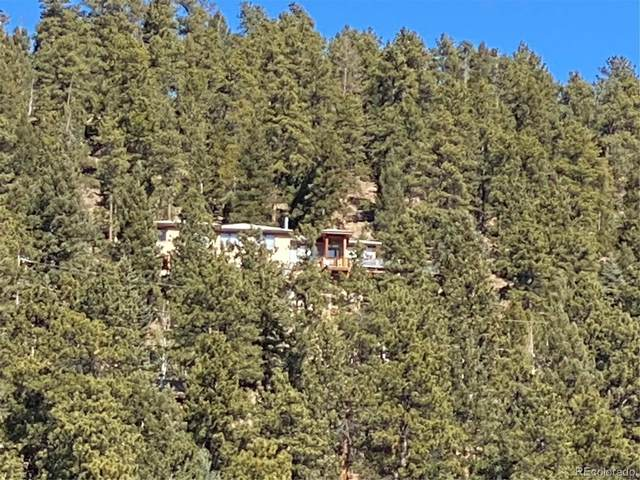 7290 Timber Trail Road, Evergreen, CO 80439 (#4937628) :: The DeGrood Team