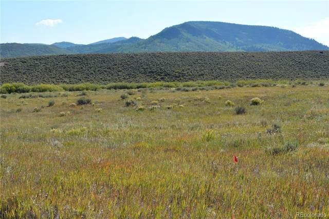 30050 Bannock Trail, Oak Creek, CO 80467 (MLS #4938409) :: Bliss Realty Group