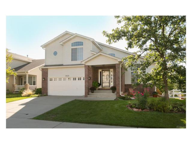 5929 Dunraven Way, Golden, CO 80403 (#4938463) :: The Pete Cook Home Group