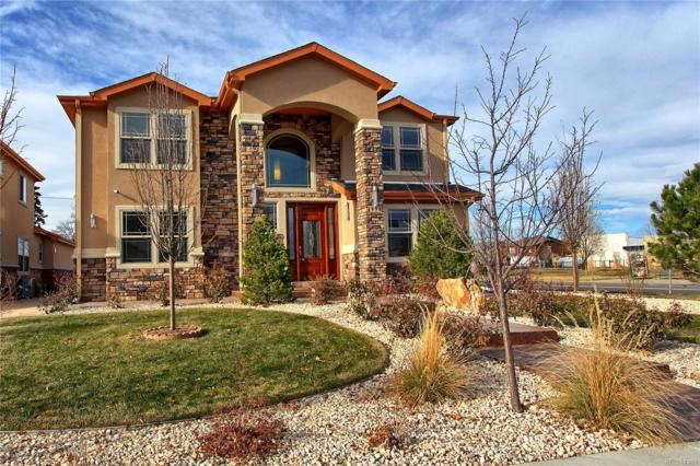 1995 Valentia Street, Denver, CO 80220 (#4940848) :: HomePopper