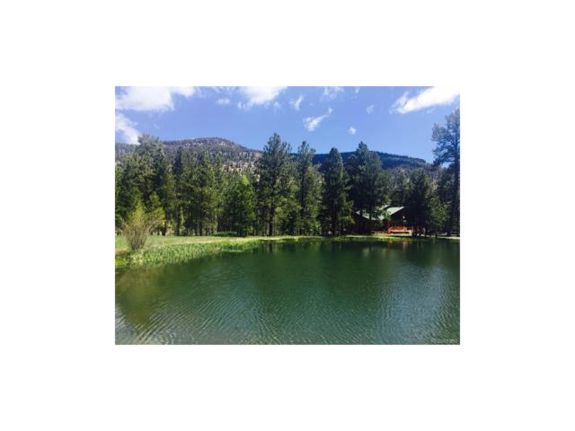 172 Elk Meadow Run, Antonito, CO 81120 (MLS #4943501) :: 8z Real Estate