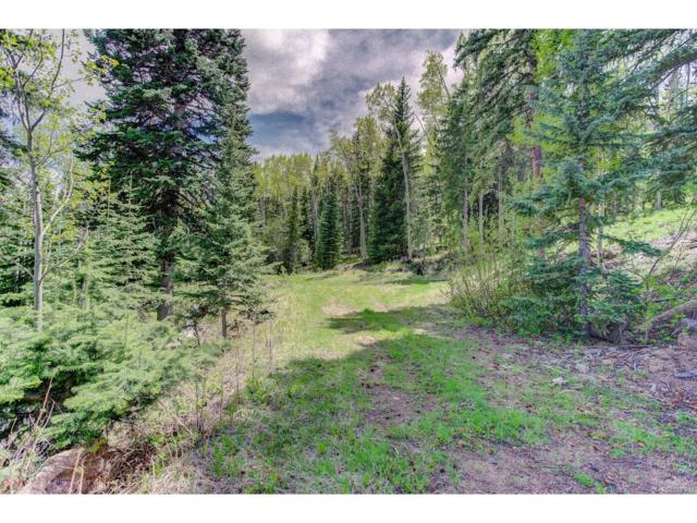 0 Trails End Drive, Idaho Springs, CO 80452 (MLS #4944341) :: 8z Real Estate