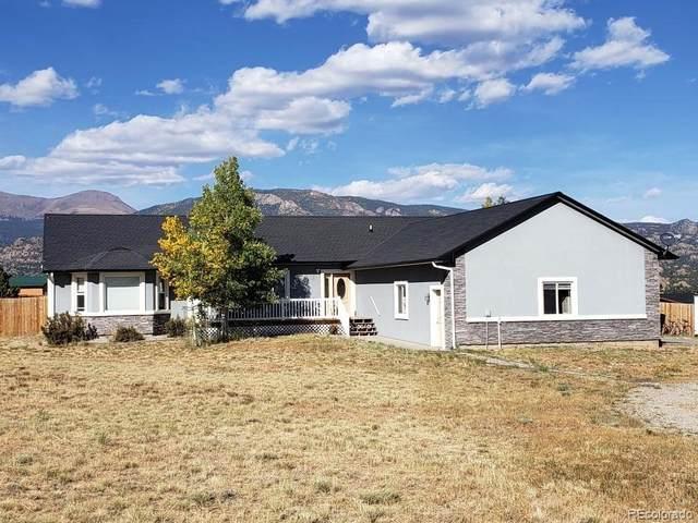 16428 County Road 356-8, Buena Vista, CO 81211 (#4945408) :: The Dixon Group