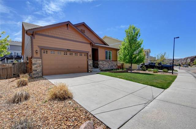 7682 Sabino Lane, Castle Rock, CO 80108 (MLS #4945716) :: 8z Real Estate