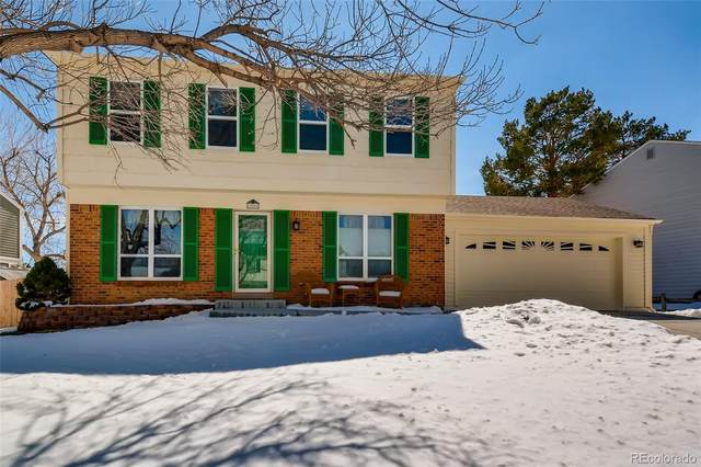 12066 W Temple Drive, Morrison, CO 80465 (#4945836) :: The Griffith Home Team