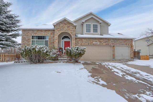 17143 Buffalo Valley Path, Monument, CO 80132 (MLS #4946703) :: 8z Real Estate