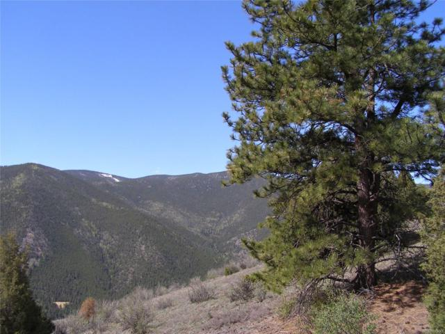 Lots 19 & 21 Wild Wagoner Trail, Dumont, CO 80436 (#4948311) :: The DeGrood Team