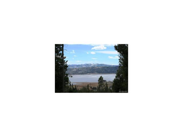 212 Gcr 6484 Aka Arapaho Dr Drive, Grand Lake, CO 80447 (MLS #4949393) :: 8z Real Estate