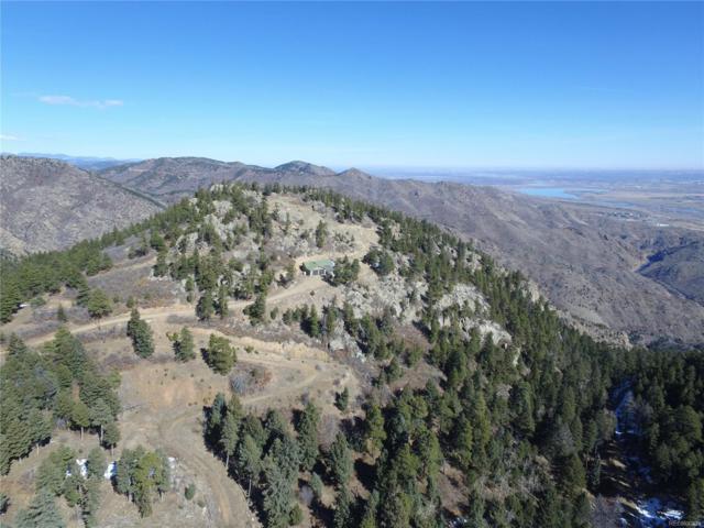 14058 Dancing Bear Trail, Littleton, CO 80127 (#4950417) :: The DeGrood Team