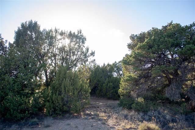 134 Navajo Ranch Estates, Walsenburg, CO 81089 (#4951063) :: The Margolis Team