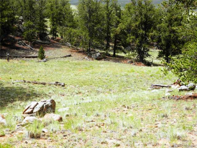 780 Cathy Drive, Hartsel, CO 80449 (MLS #4954212) :: Bliss Realty Group
