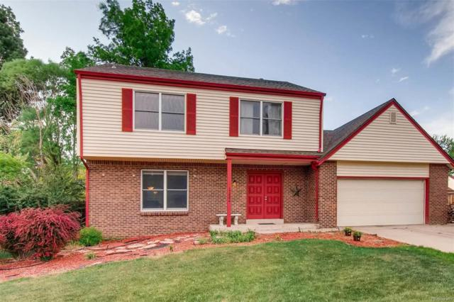 12884 Cook Circle, Thornton, CO 80241 (#4954424) :: The DeGrood Team