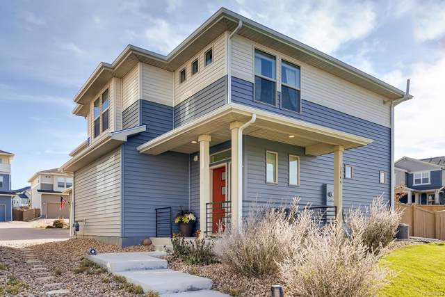 3744 Celestial Avenue, Castle Rock, CO 80109 (#4954510) :: HomeSmart Realty Group