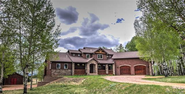 1471 County 51 Road, Divide, CO 80814 (#4957606) :: The DeGrood Team