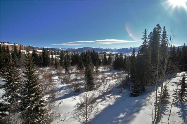10000 Ryan Gulch Road #205, Silverthorne, CO 80498 (#4957944) :: The Brokerage Group