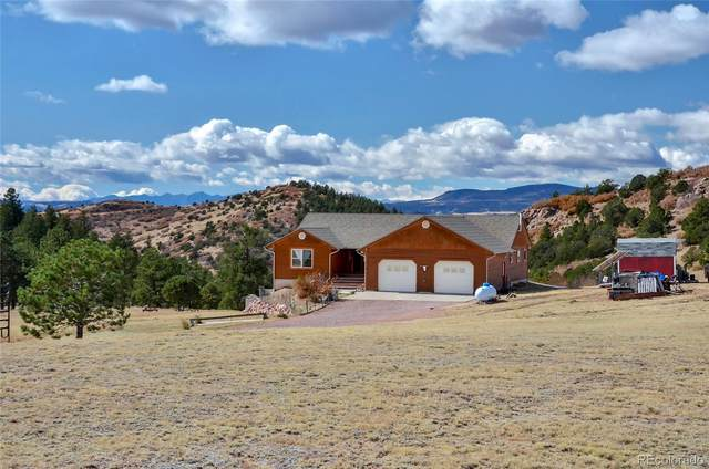 2589 Buckhorn Lane, Canon City, CO 81212 (#4959102) :: James Crocker Team