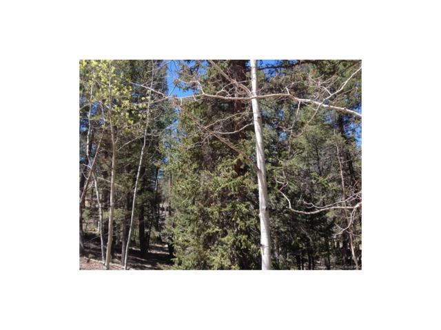 115 Junction Way, Florissant, CO 80816 (#4959645) :: The DeGrood Team