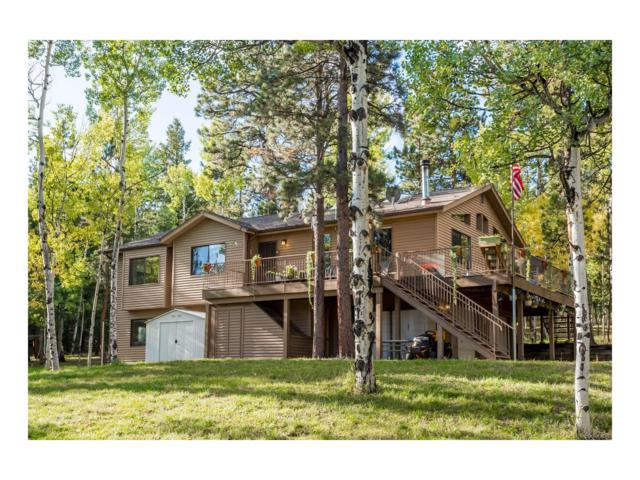 902 Bluebird Lane, Bailey, CO 80421 (MLS #4960483) :: 8z Real Estate