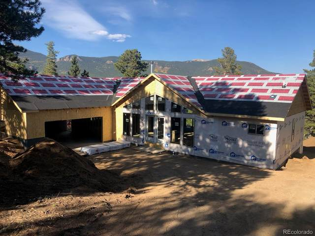 249 Miners Way, Bailey, CO 80421 (MLS #4960949) :: 8z Real Estate