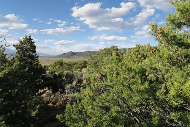 Not Assigned, Fort Garland, CO 81133 (#4961122) :: The Brokerage Group