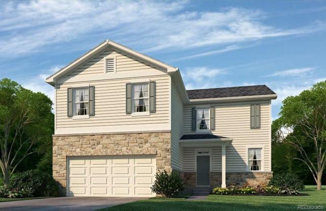 1570 Highfield Drive, Windsor, CO 80550 (#4964456) :: Wisdom Real Estate