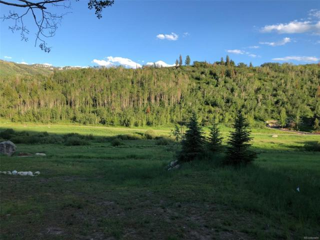 2865 Littlefish Trail, Steamboat Springs, CO 80487 (#4971312) :: House Hunters Colorado