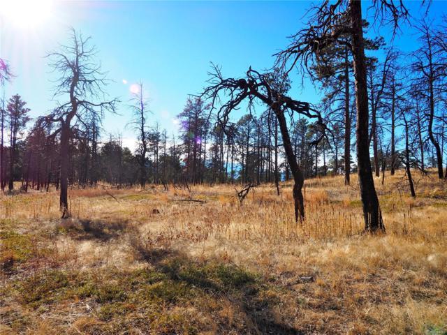 13310 Frank Road, Colorado Springs, CO 80908 (MLS #4976489) :: 8z Real Estate