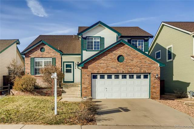 9806 Foxhill Circle, Highlands Ranch, CO 80129 (#4978015) :: The DeGrood Team