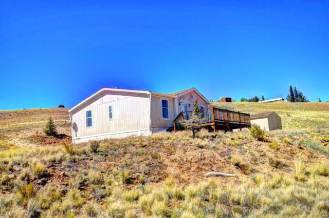 101 Shotgun Court, Como, CO 80432 (#4978517) :: The Heyl Group at Keller Williams