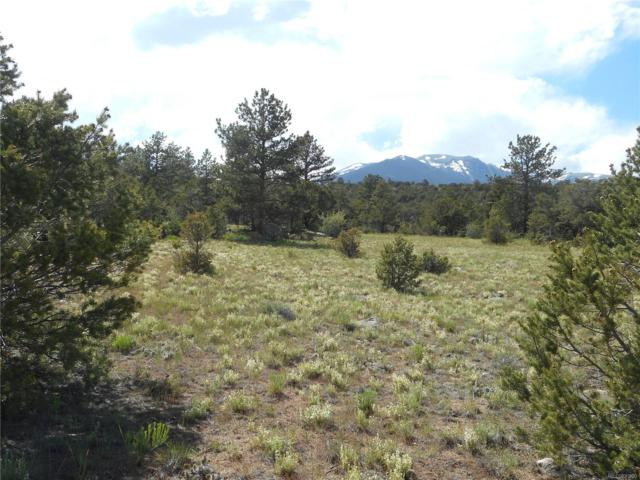 30161 Princeton Circle, Buena Vista, CO 81211 (MLS #4978635) :: 8z Real Estate