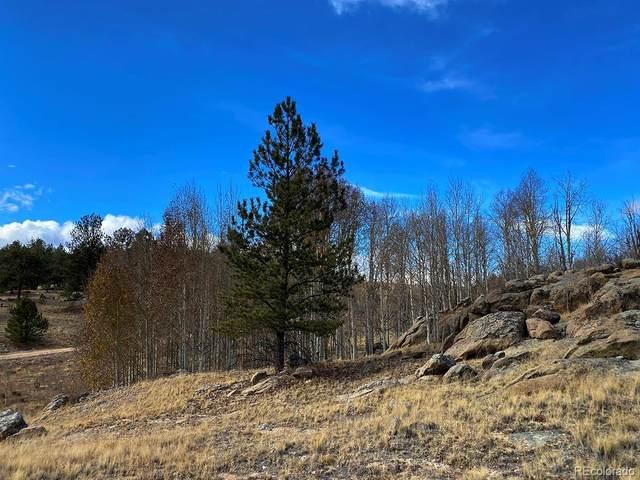 730 Superstition Trail, Hartsel, CO 80449 (#4979734) :: Hudson Stonegate Team