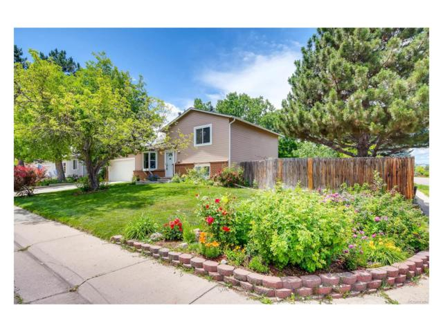 6515 S Dudley Way, Littleton, CO 80123 (#4980543) :: The Peak Properties Group