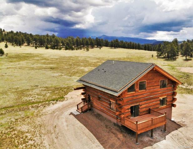654 High Pasture Road, Florissant, CO 80816 (#4982368) :: The Heyl Group at Keller Williams