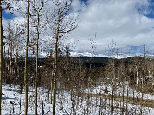 Lot 50 Glacier Ridge Road, Alma, CO 80420 (#4983858) :: The DeGrood Team