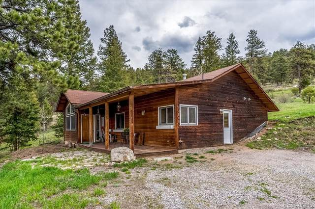 95 Mable Lane, Bailey, CO 80421 (#4986975) :: Berkshire Hathaway HomeServices Innovative Real Estate