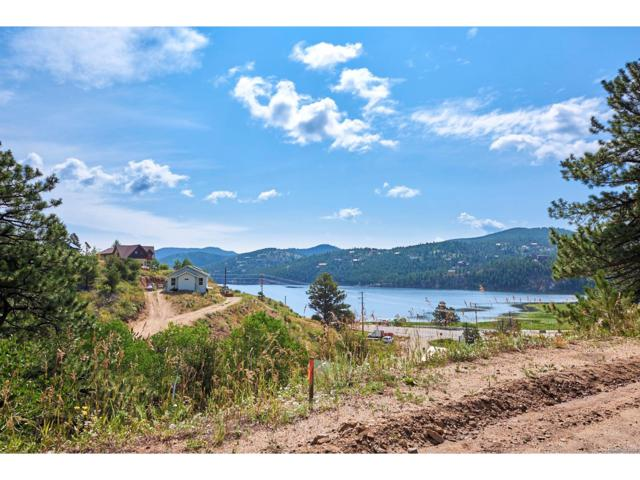 36 Stinky Gulch Road, Nederland, CO 80466 (MLS #4988651) :: 8z Real Estate