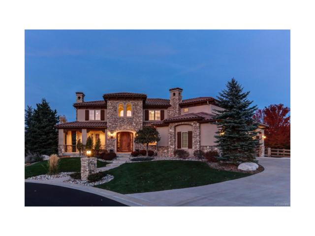 9700 S Shadow Hill Circle, Lone Tree, CO 80124 (#4991129) :: The Peak Properties Group