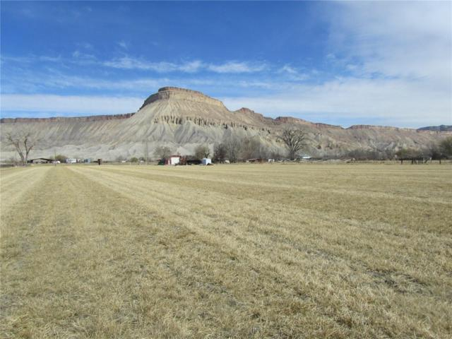 3415 F 3/4 Road, Clifton, CO 81520 (MLS #4993495) :: 8z Real Estate