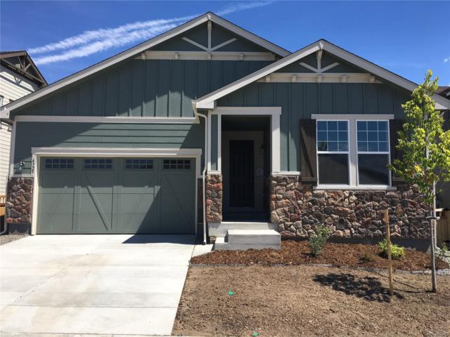 4325 Broken Hill Drive, Castle Rock, CO 80109 (#4994696) :: Hometrackr Denver