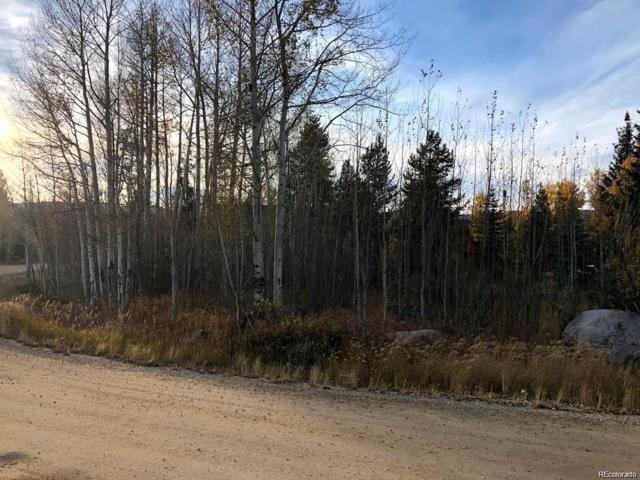 801 County Road 4980, Grand Lake, CO 80447 (#4997425) :: The Heyl Group at Keller Williams