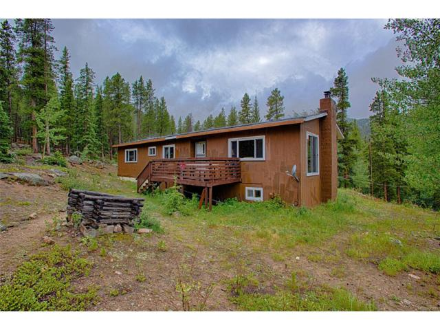 9047 Chicago Creek Road, Idaho Springs, CO 80452 (MLS #4998465) :: 8z Real Estate