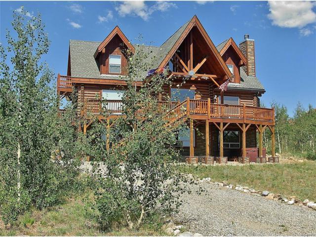 917 Sheep Ridge Road, Fairplay, CO 80440 (MLS #5002274) :: 8z Real Estate