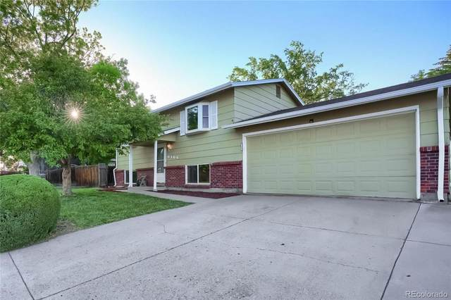 6105 W 79th Avenue, Arvada, CO 80003 (#5006304) :: Bring Home Denver with Keller Williams Downtown Realty LLC