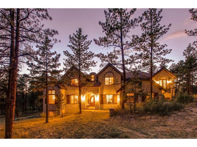 7077 Bear Dance Drive, Larkspur, CO 80118 (MLS #5007275) :: 8z Real Estate
