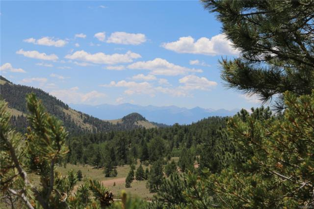 4601 Cty Rd 16, Cotopaxi, CO 81223 (MLS #5007379) :: 8z Real Estate