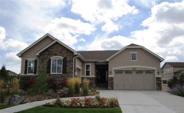 5667 Echo Hollow Street, Castle Rock, CO 80104 (#5010297) :: The Peak Properties Group