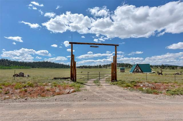 8009 Co Road 53, Hartsel, CO 80449 (#5010727) :: The Griffith Home Team