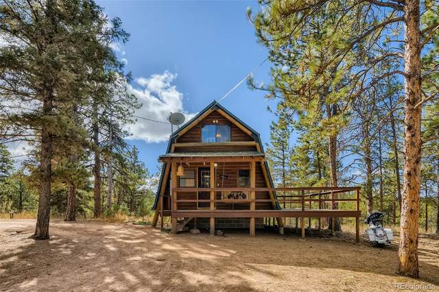 1490 County Road 79, Woodland Park, CO 80863 (#5011985) :: The DeGrood Team