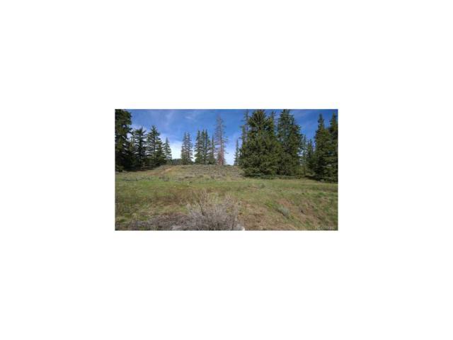 79 Canyon View Court, Dillon, CO 80435 (#5012535) :: Bring Home Denver